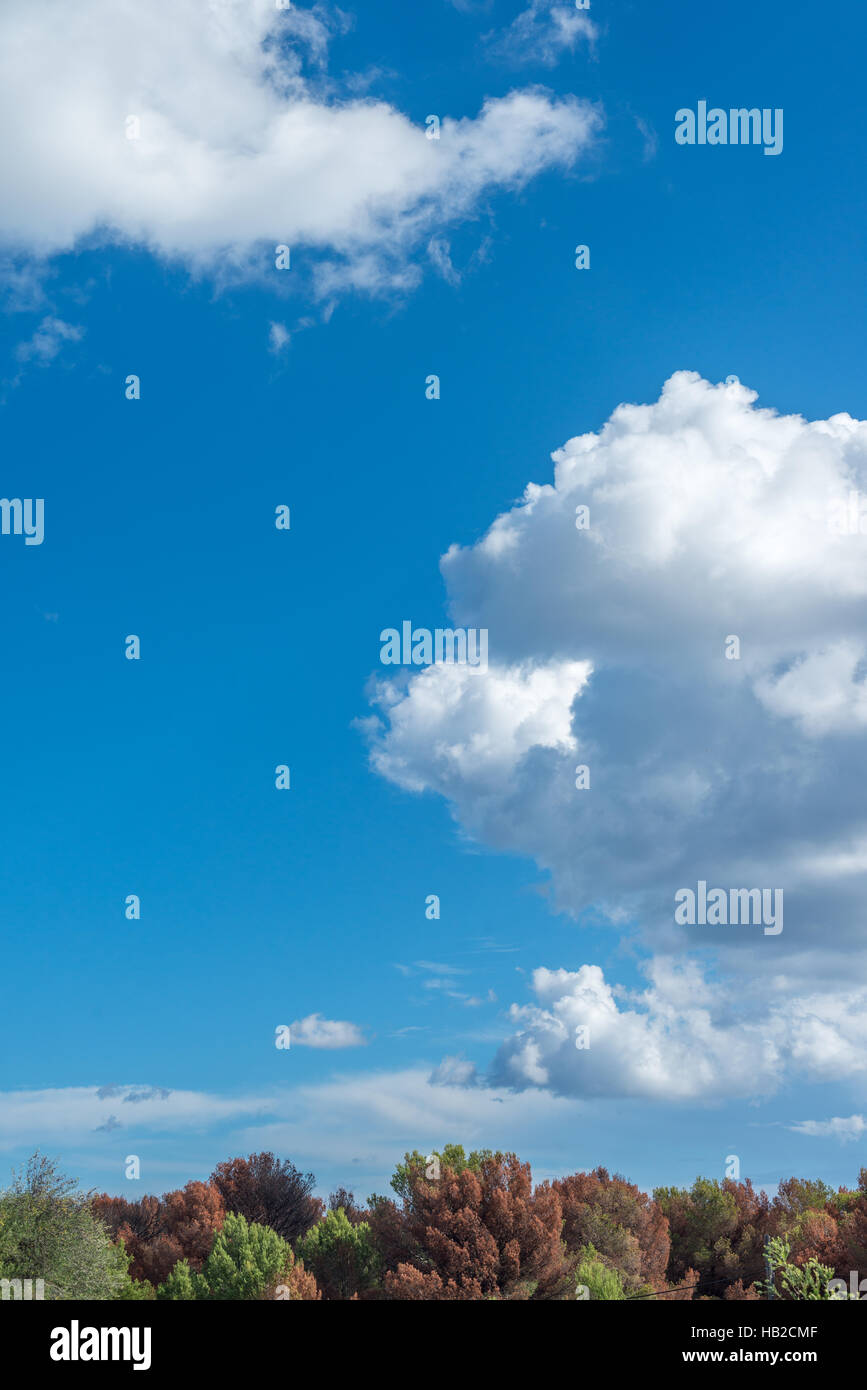 cumulus clouds against a blue sky in Autumn - Stock Image