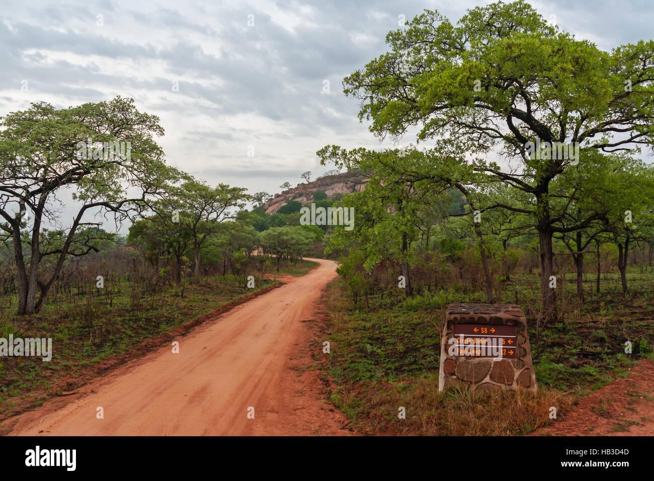 Bushland - Stock Image