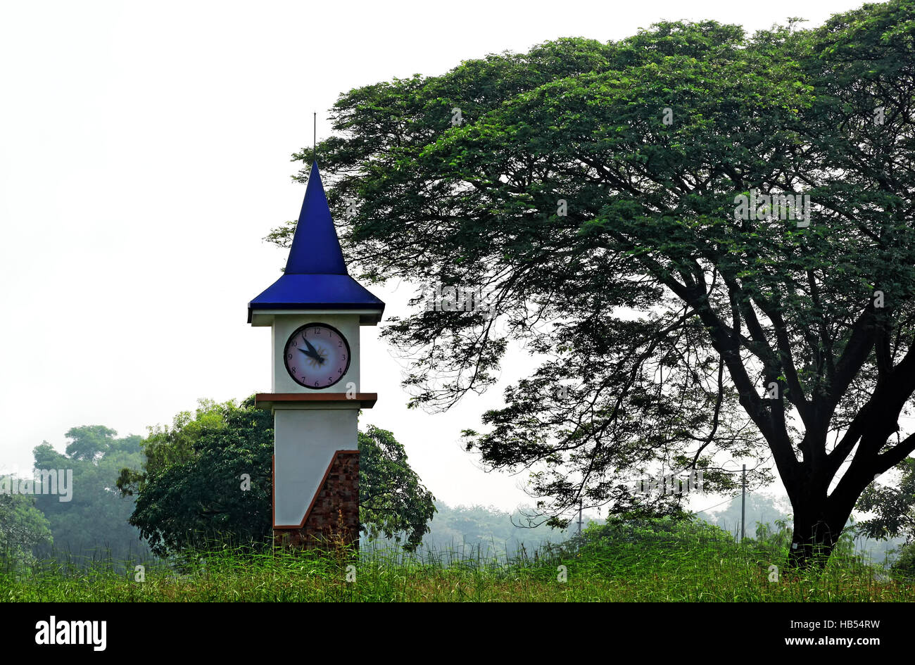 Mini scenic clock tower among vegetation in the countryside of Goa, India - Stock Image