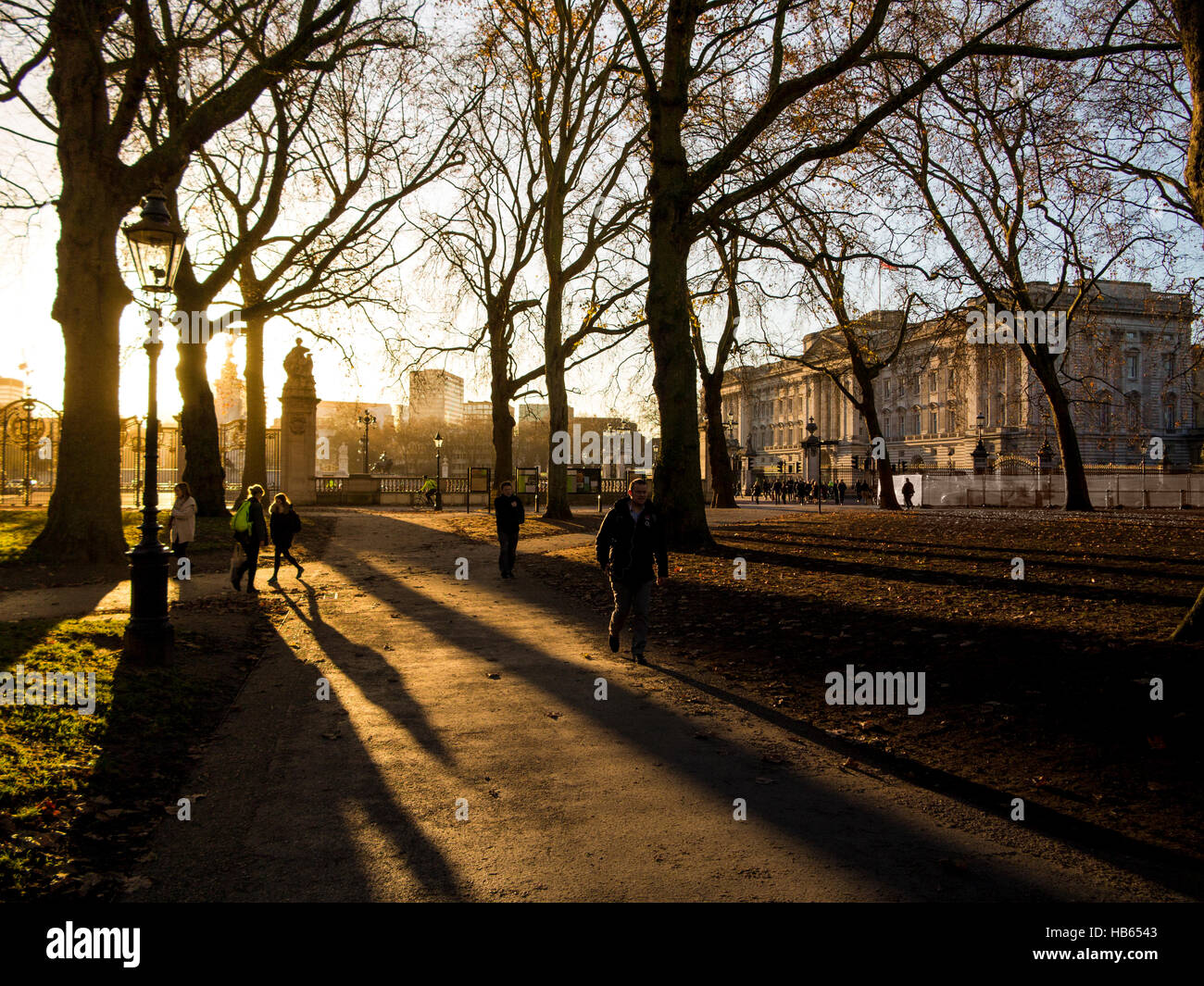 Long shadows in Green Park with Buckingham Palace - Stock Image