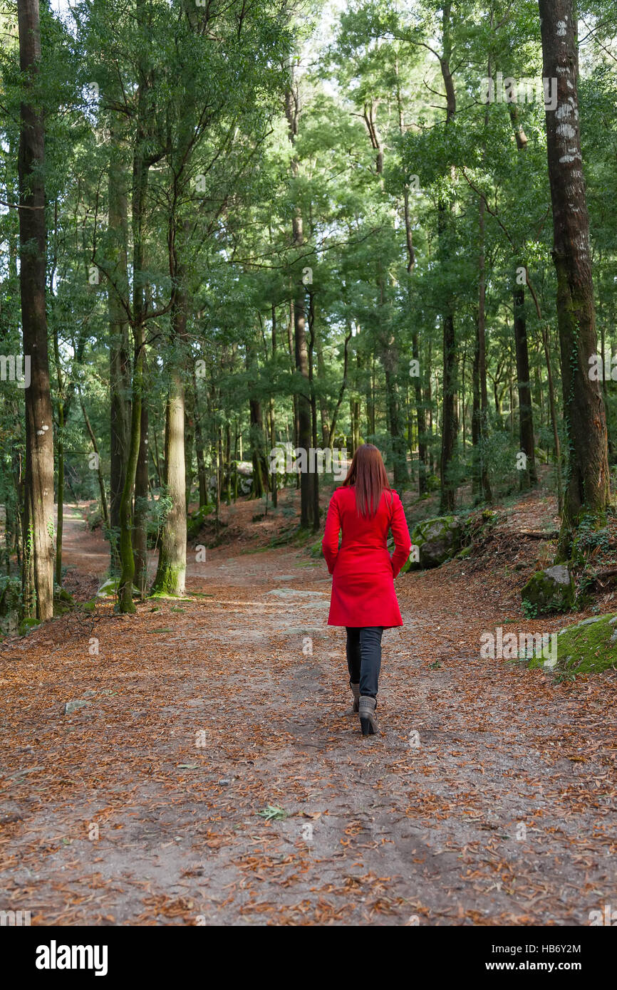 Young woman walking alone on a forest dirt path wearing a red overcoat on a cold winter day - Stock Image