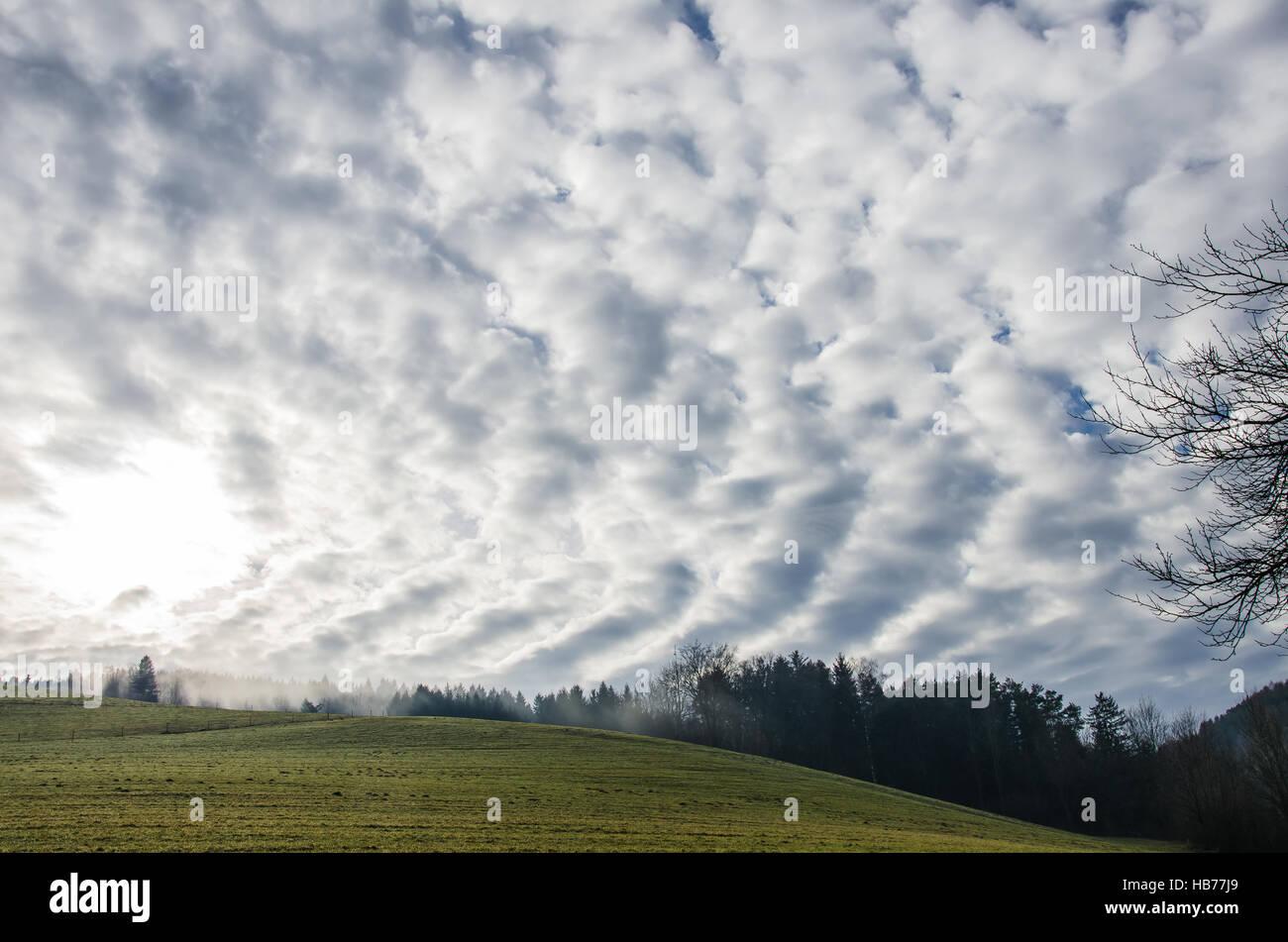 landscape / bucklige welt / niederösterreich - Stock Image