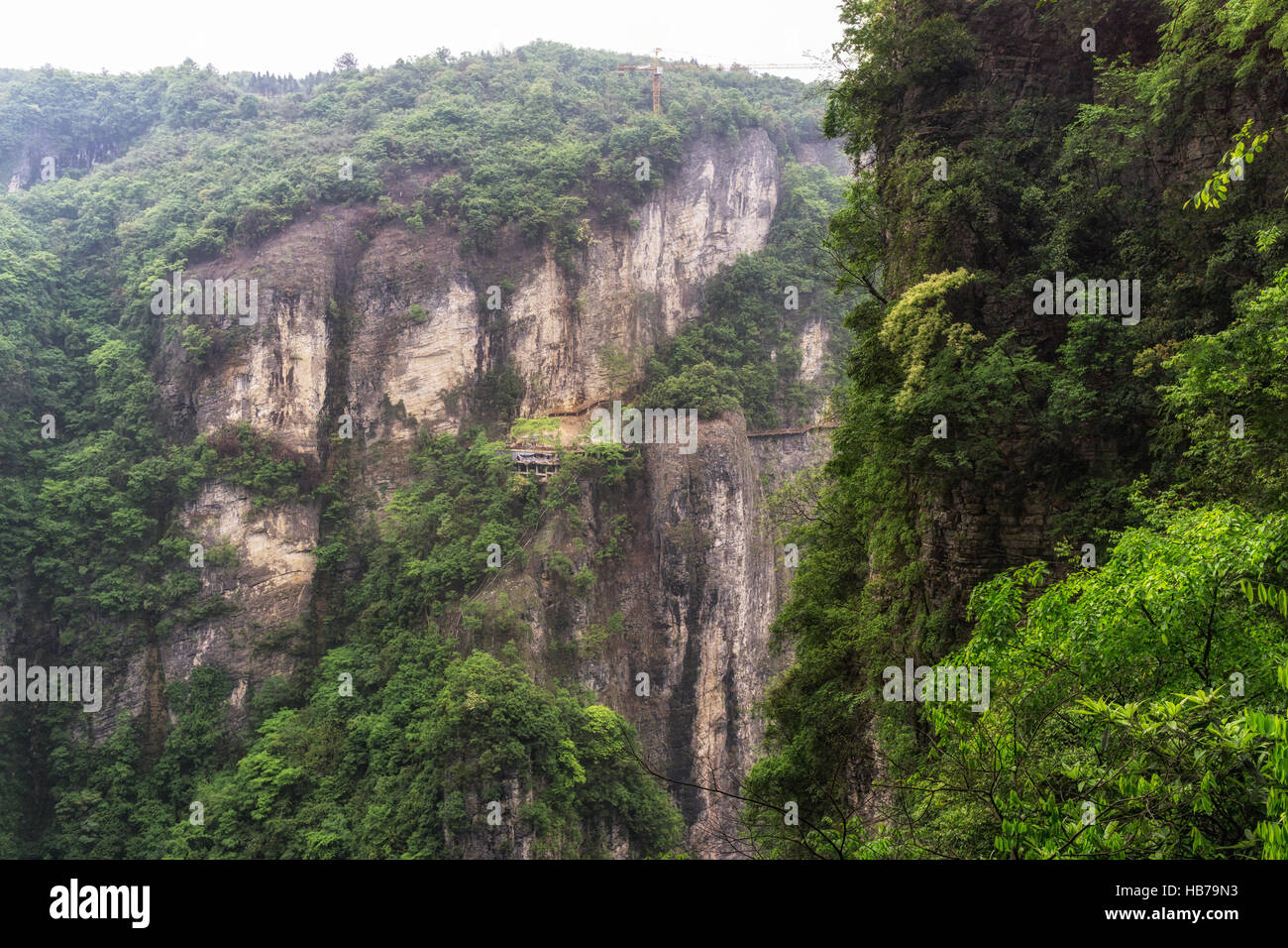zhangjiajie grand canyon daxiagu Stock Photo
