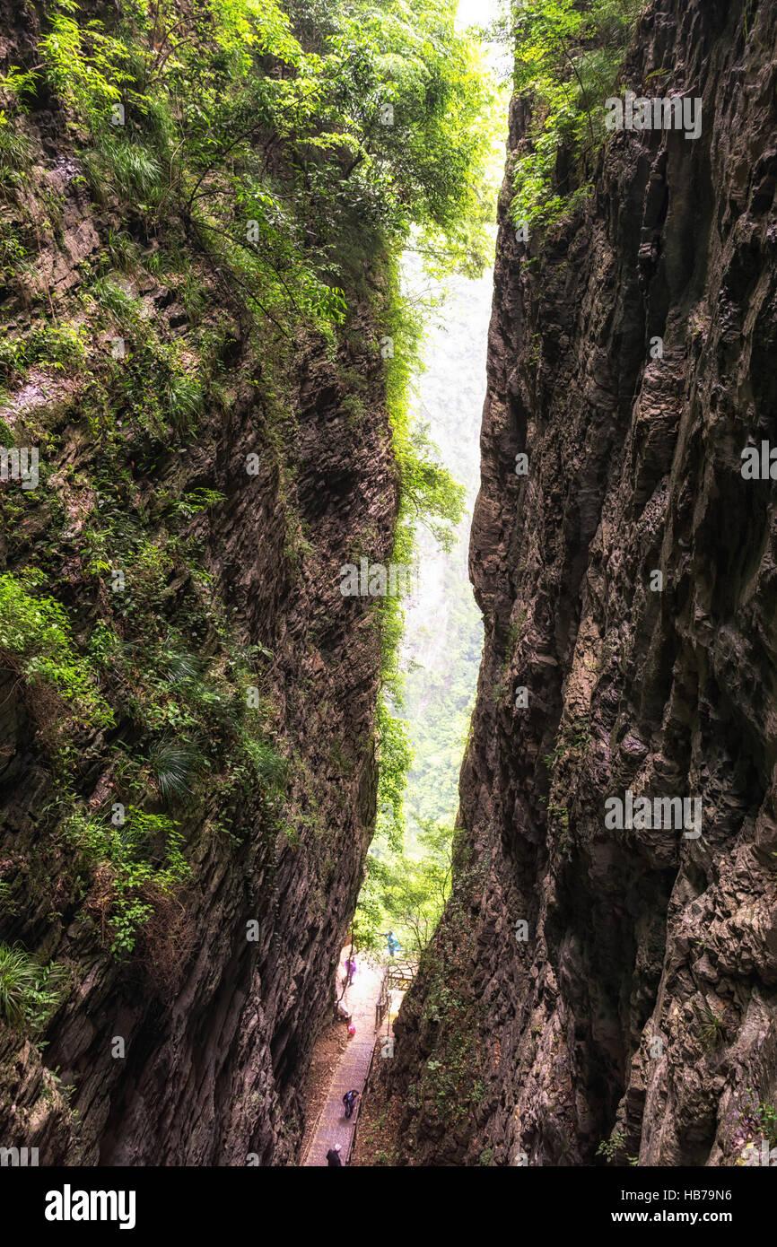 zhangjiajie grand canyon daxiagu Stock Photo