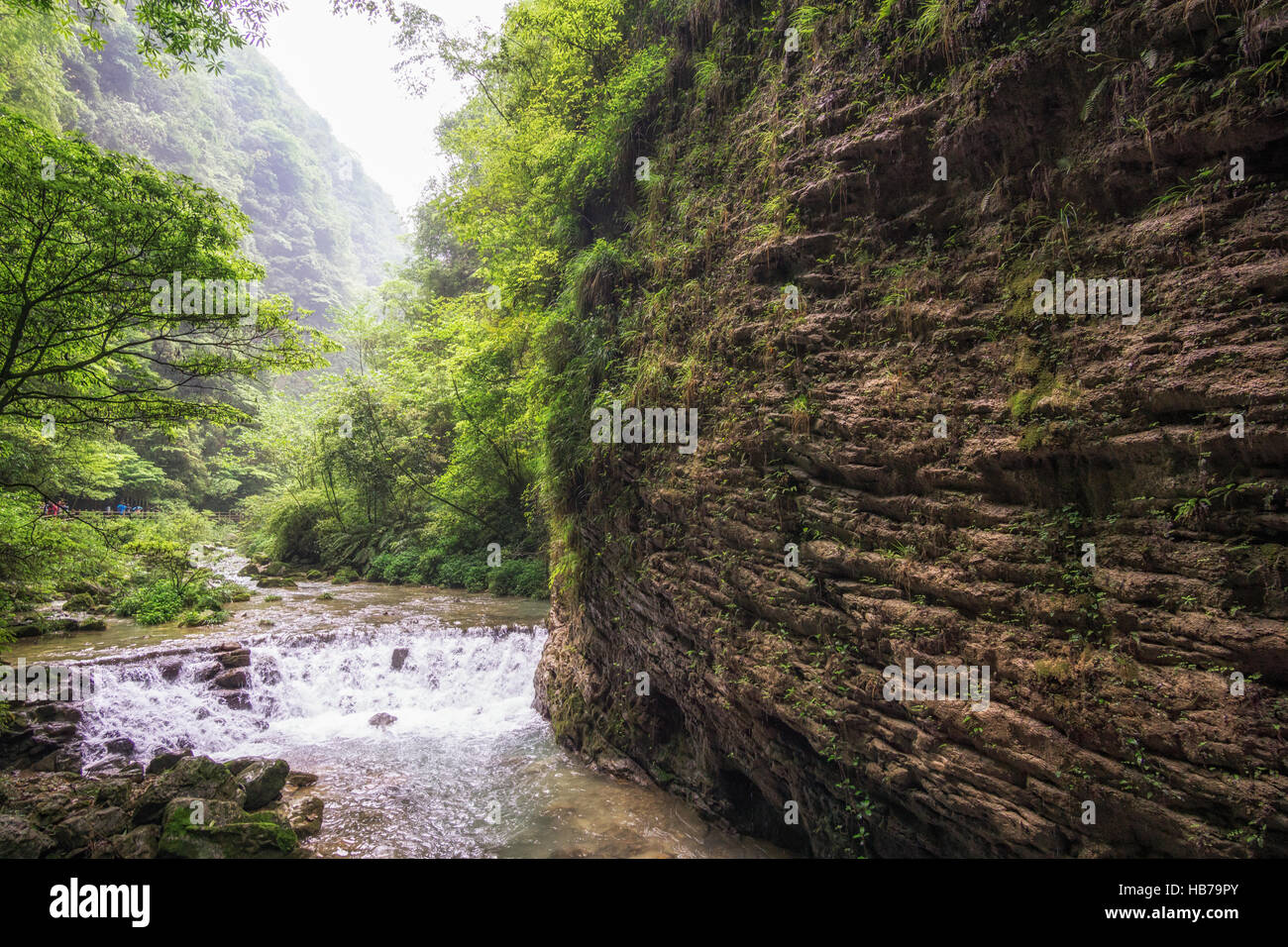 zhangjiajie grand canyon creek view Stock Photo