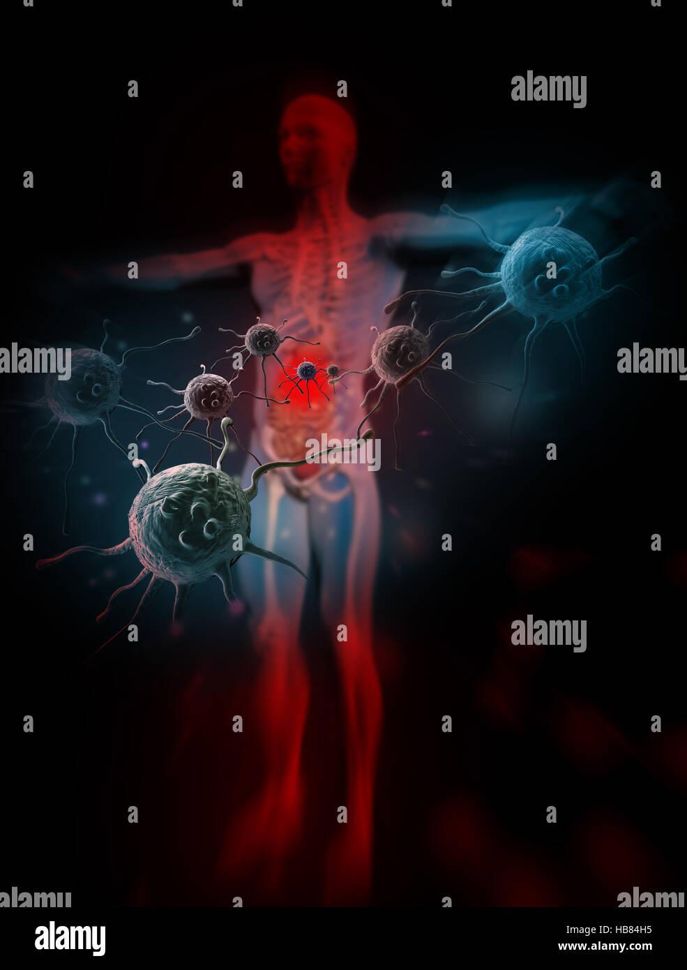 Immunity Against Diseases - Stock Image