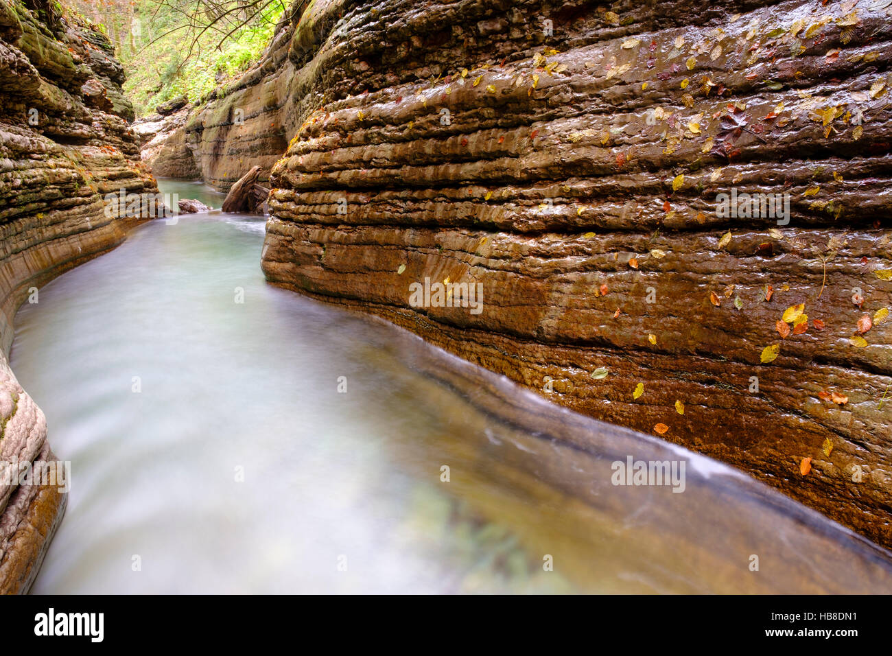 Gorge, stream, Taugl, Tauglbach, Tauglbachklamm, Hallein District, Salzburg, Austria Stock Photo
