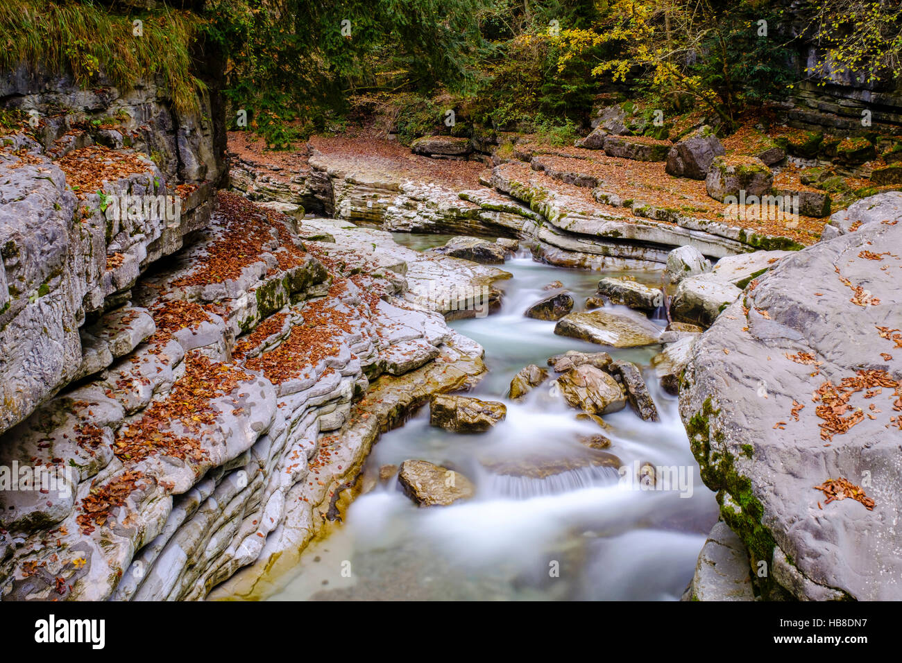 Stream, Taugl, Tauglbach, Tauglgries Nature Reserve, Bad Vigaun, Hallein District, Salzburg, Austria Stock Photo