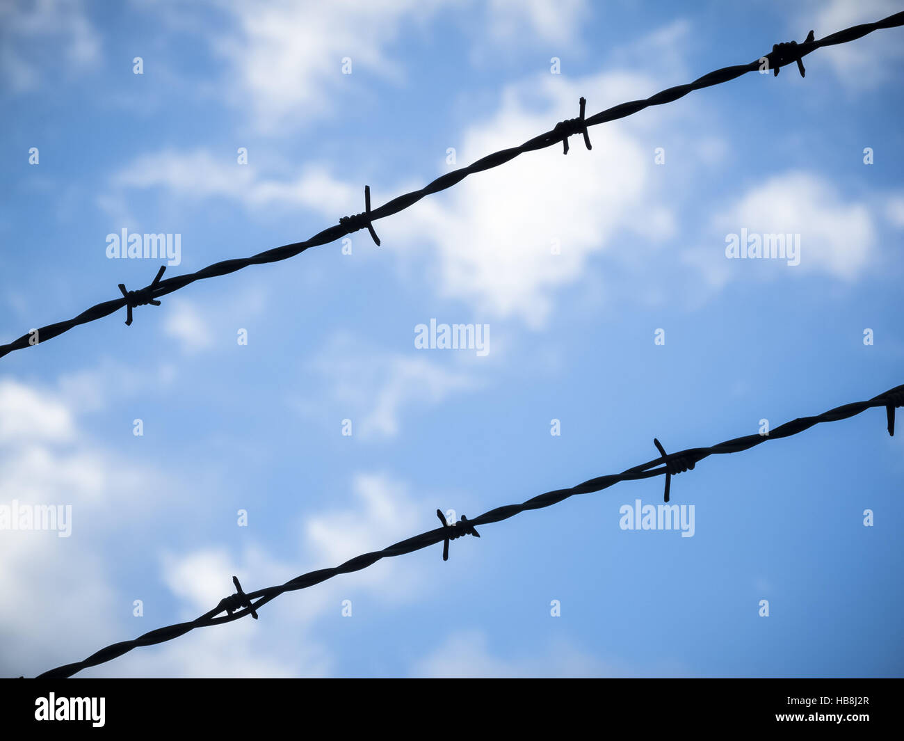 Barbed wire in the sky - Stock Image