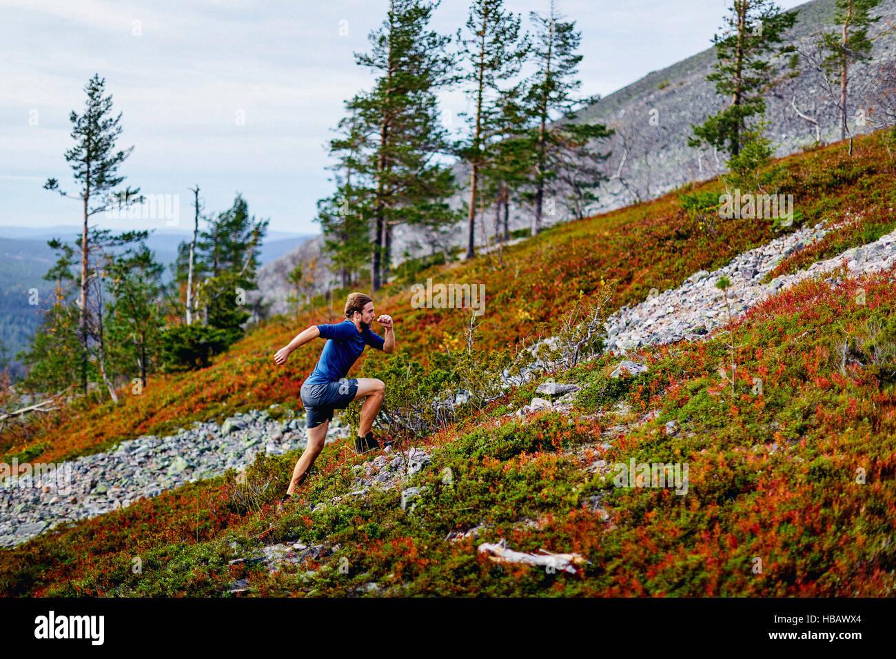 Man running up steep hill, Kesankitunturi, Lapland, Finland - Stock Image