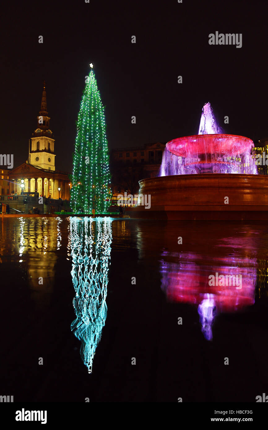 London, UK. 5th December 2016. Trafalgar Square Christmas Tree, fountain and reflection, Trafalgar Square, London - Stock Image