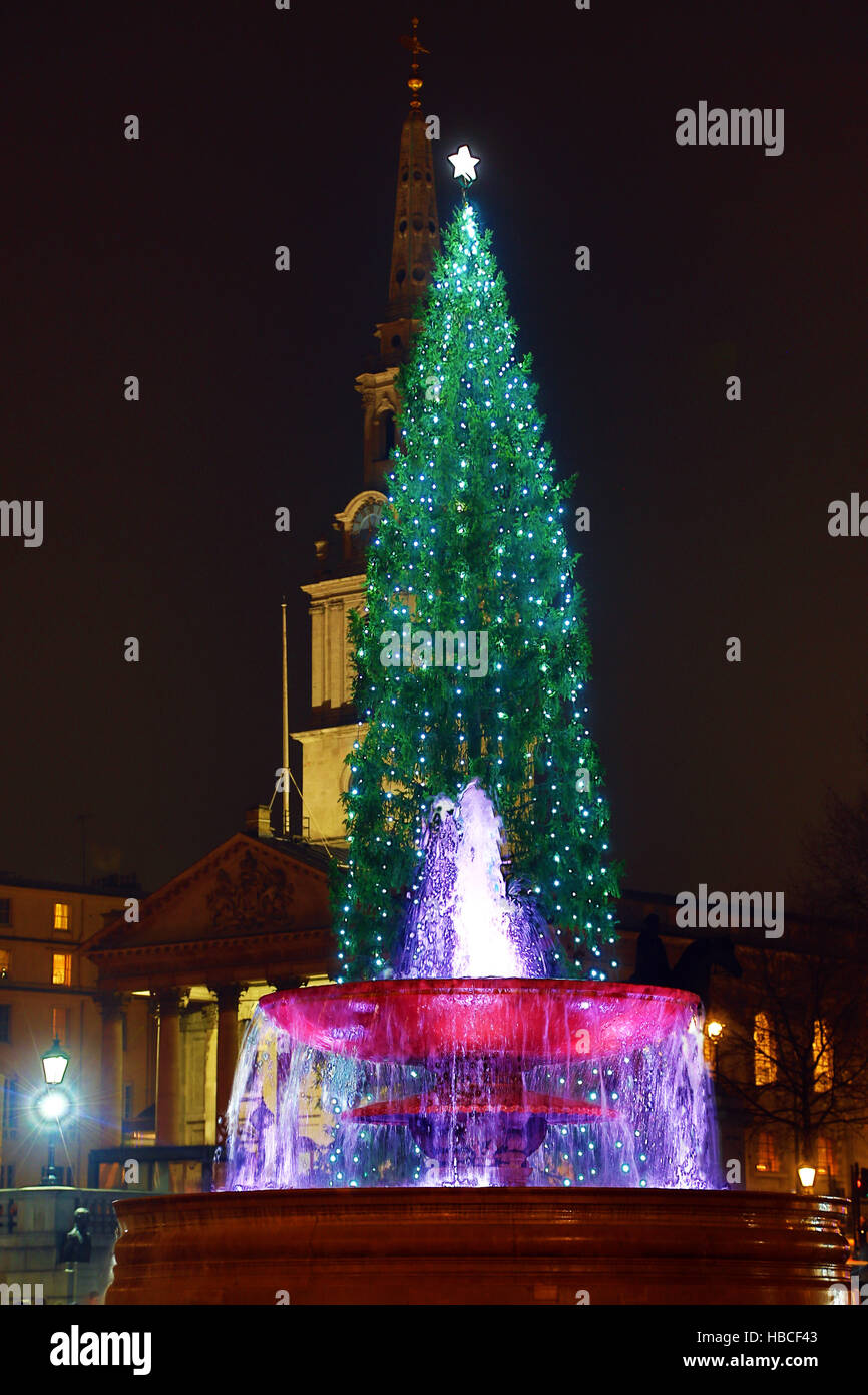 London, UK. 5th December 2016. Trafalgar Square Christmas Tree and fountain in Trafalgar Square, London, UK. Credit: - Stock Image