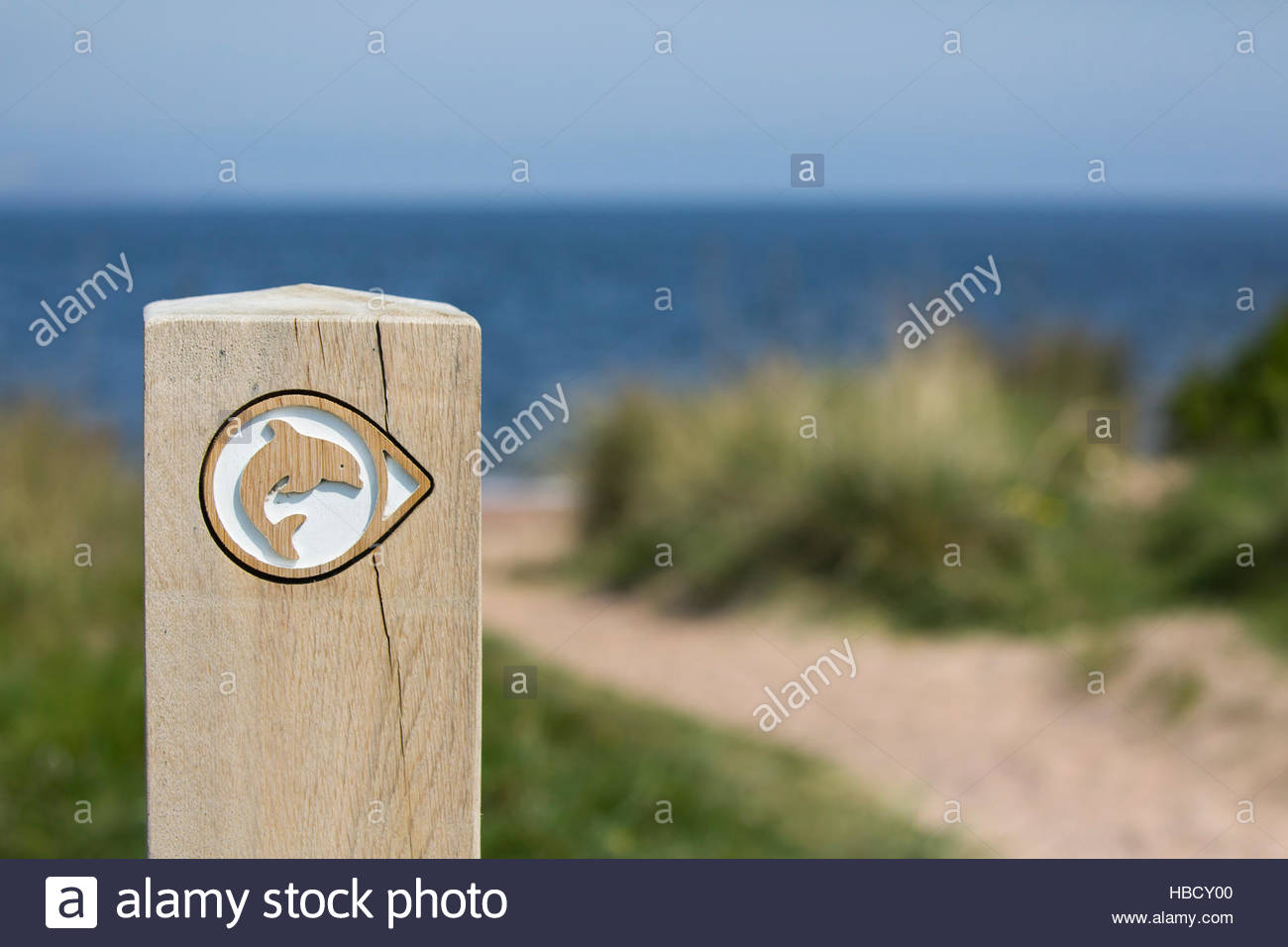 Bottlenose dolphin (Tursiops truncatus) viewpoint sign, Chanonry Point, Fortrose, Moray Firth, Scotland, UK - Stock Image