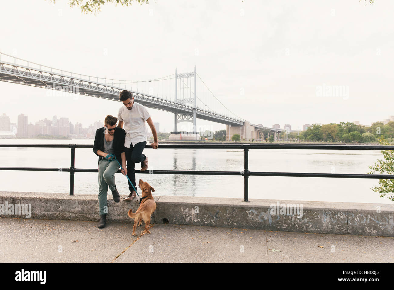 Young male couple on riverside looking at dog, Astoria, New York, USA - Stock Image