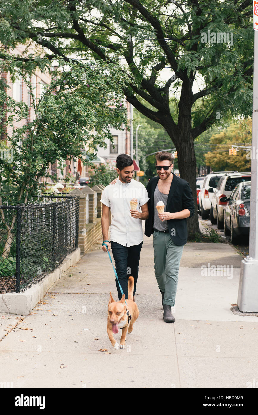 Young male couple eating ice cream cones whilst walking dog on suburban sidewalk - Stock Image