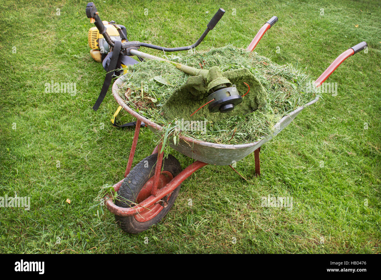 wheelbarrow with grass and petrol trimmer - Stock Image