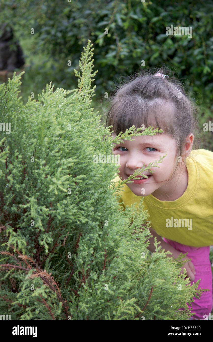 Little girl playing in hide-and-seek - Stock Image