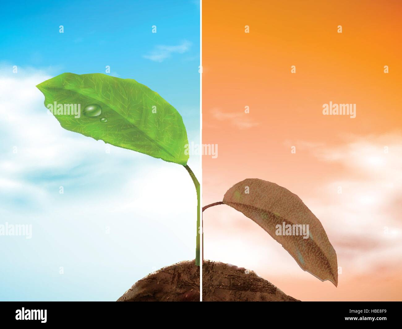 comparison of seedling 3D illustration - well growing and drooping seedling - Stock Vector