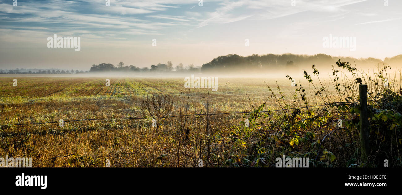 Rushmere St Andrew.  England UK.  Mist lingering over a farm field on a frosty morning creates an atmospheric landscape. - Stock Image