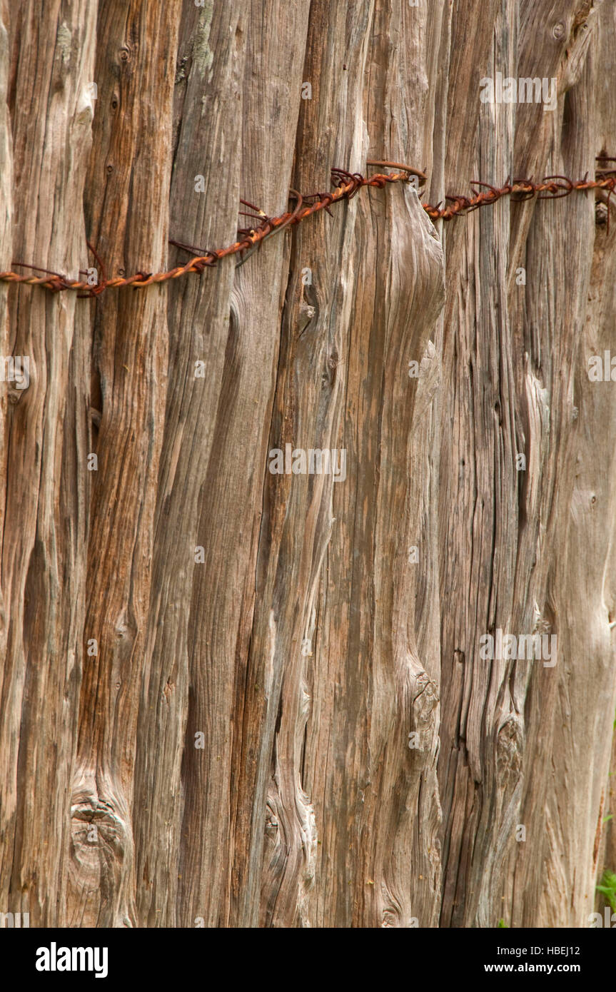 Farm fence, South Llano River State Park, Texas - Stock Image