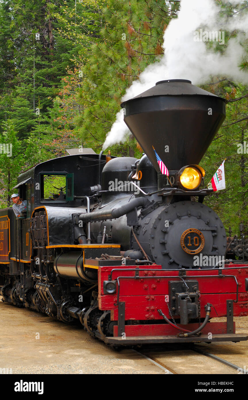Shay #10, Three cylinder, Three truck, Shay-geared, 70 ton Class Locomotive, 1928, Yosemite Mountain Sugar Pine - Stock Image