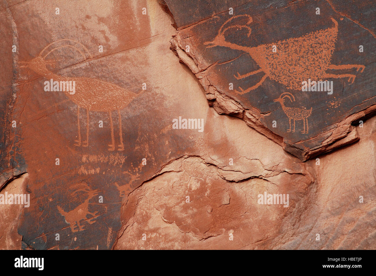 Bighorn Sheep, Eye of the Sun Anasazi Petroglyphs, Monument Valley Navajo Tribal Park, Navajo Nation Reservation, - Stock Image