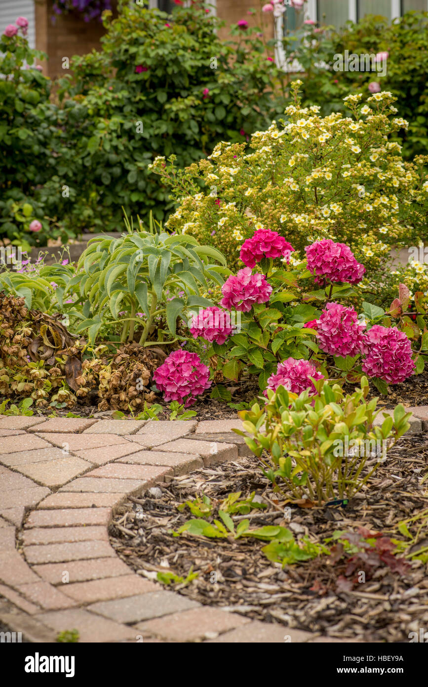 Flower beds set within block paving driveway at front of house. - Stock Image