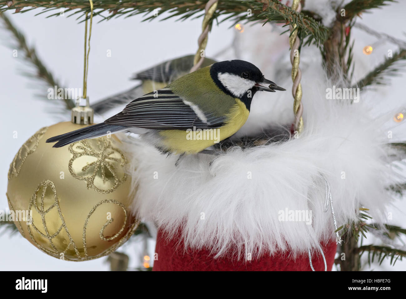 Titmouse Sitting On A Decorated Christmas Tree