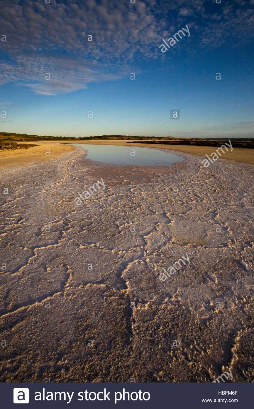 Salt collects in the Coorong estuary at Hack Point while drying up and disconnecting. - Stock Image