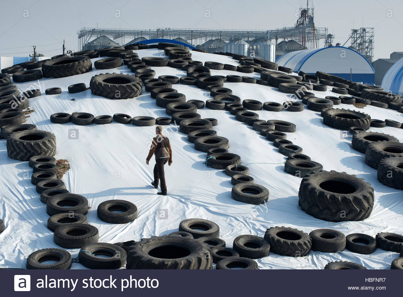 Silage from chopped corn and milo is covered on a farm in Dnipropetrovsk Province. - Stock Image