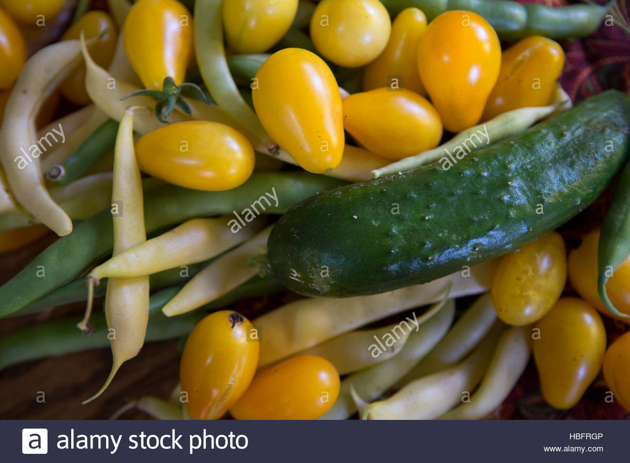 Homegrown vegetables supplement what a family gets from the food pantry. - Stock Image