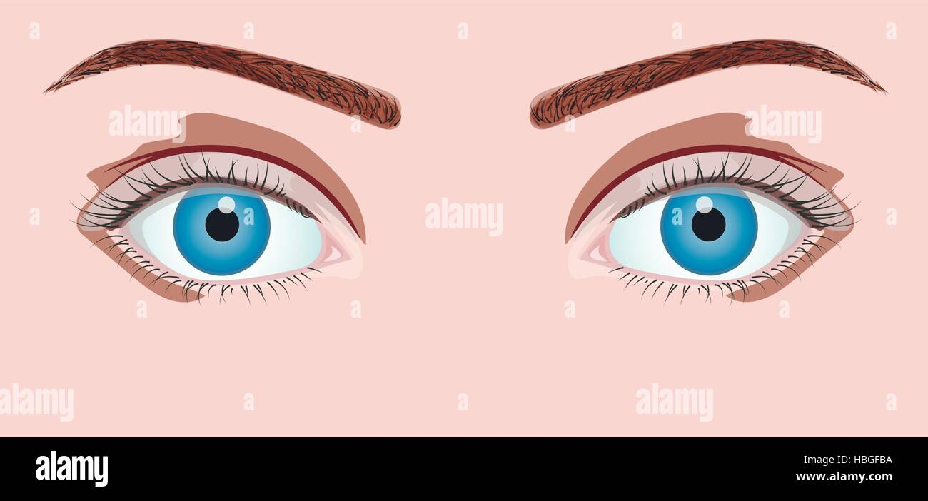 Blue eyes isolated in vector Stock Vector