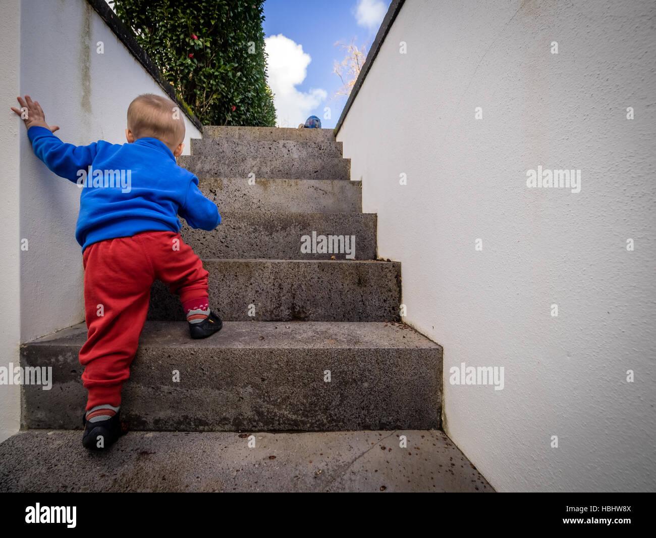 little boy climbing steps stock photo 127626826 alamy