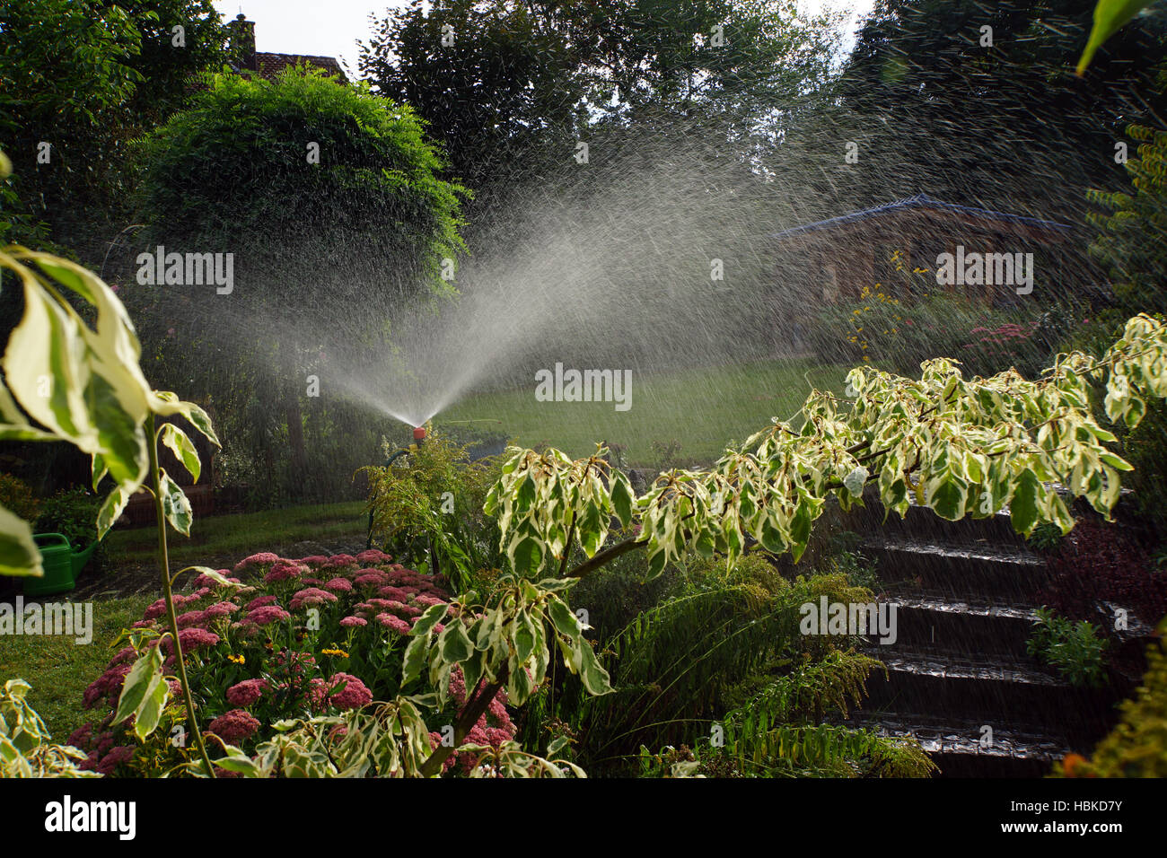 Garden Irrigation Stock Photo