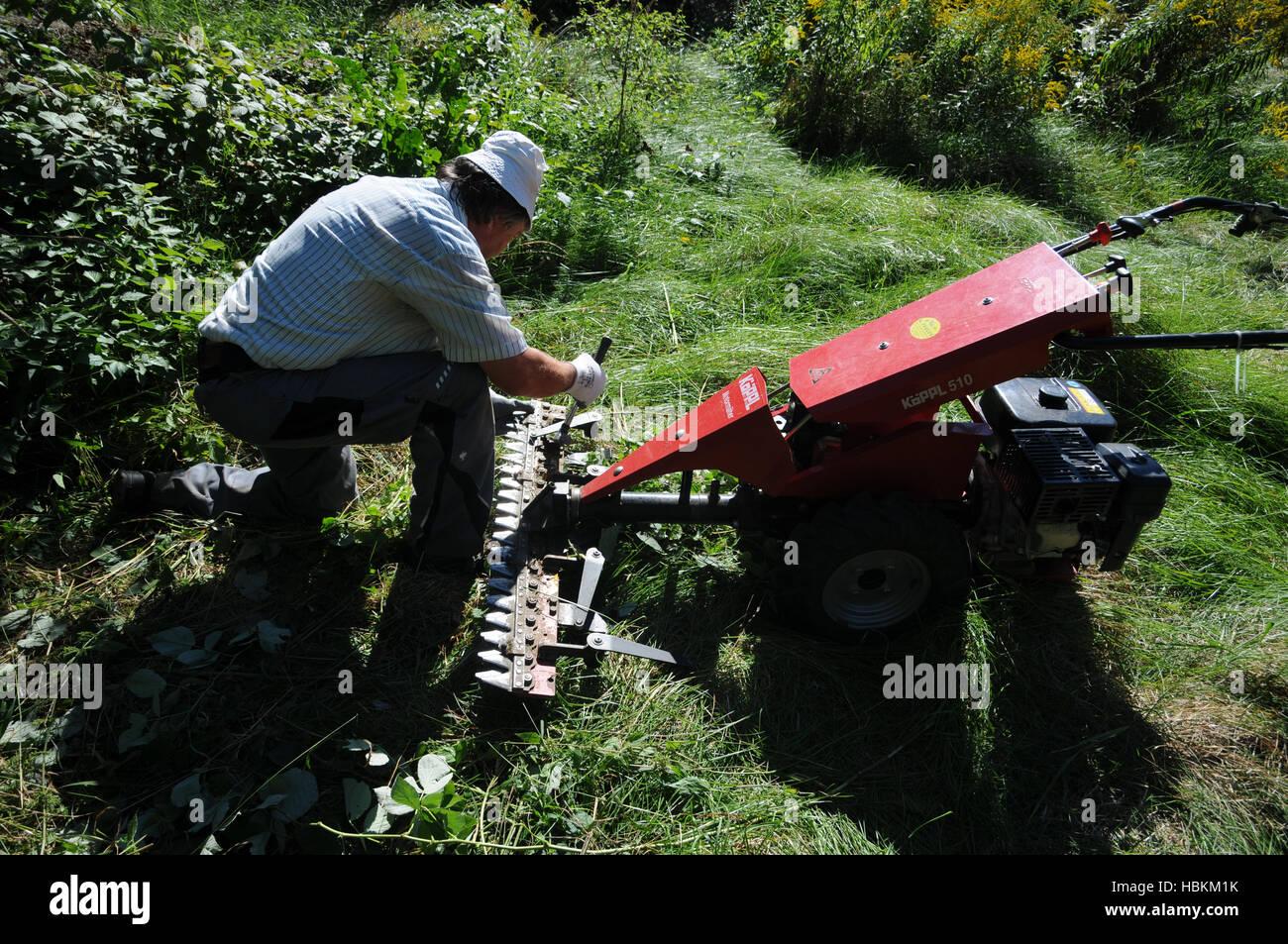 Lawn Mower Repair Stock Photos & Lawn Mower Repair Stock