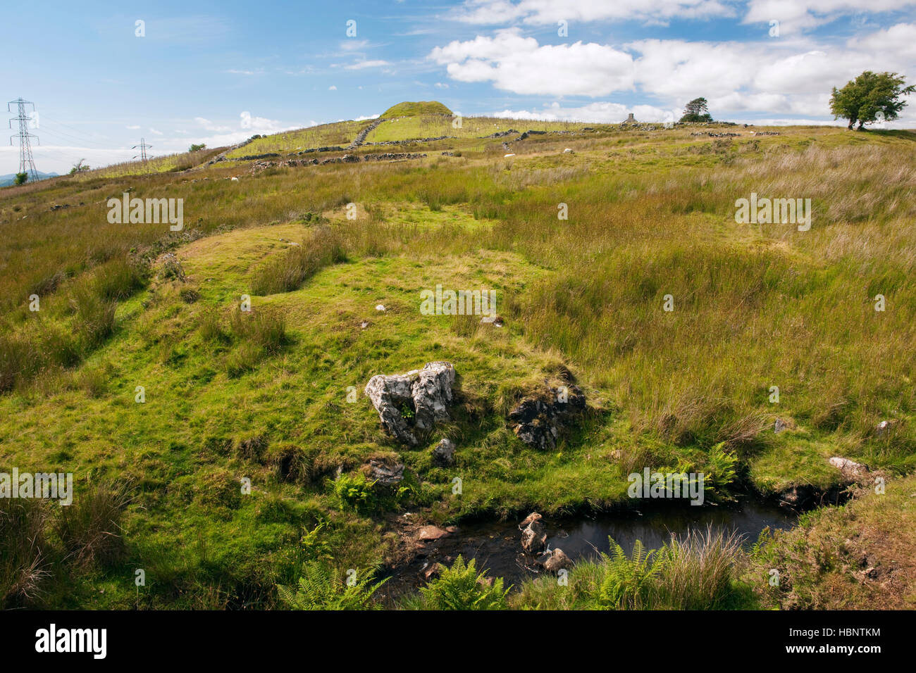 Tomen y Mur Roman auxiliary fort and later Norman castle motte looking north west from the Roman road, Gwynedd, - Stock Image
