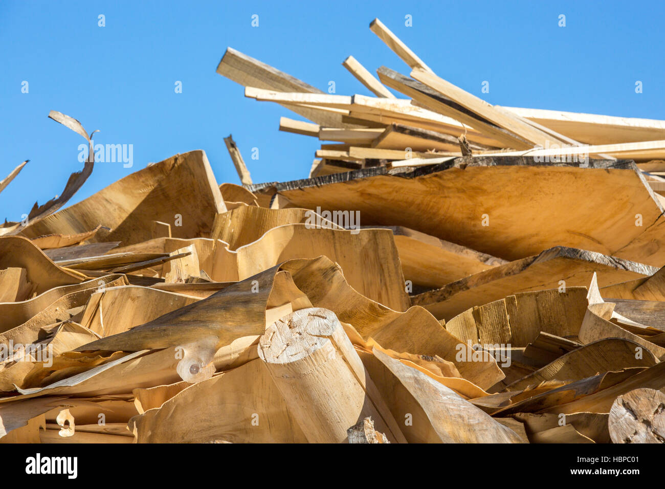 Wood chips for a biomass combustion - Stock Image