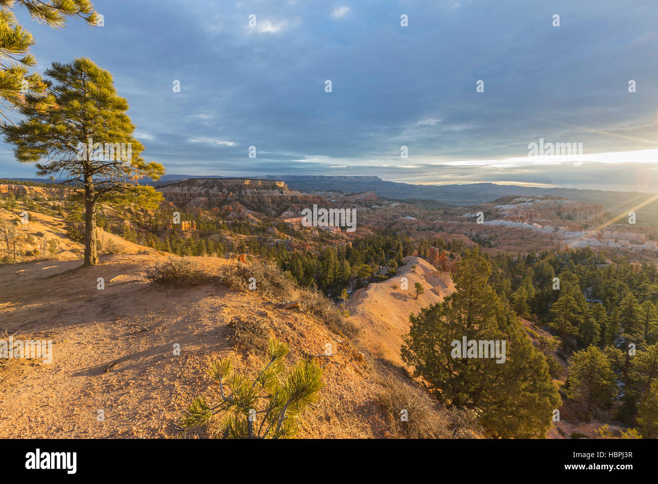 Sunrise view at Bryce Canyon National Park in Southern Utah; Stock Photo