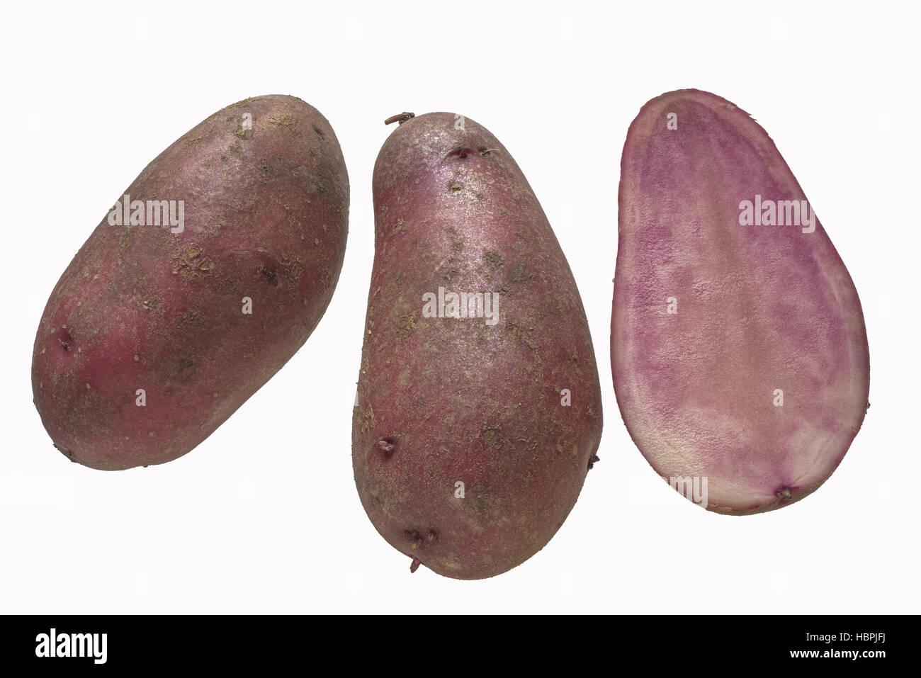 Potato strain Rote Emmalie - Stock Image