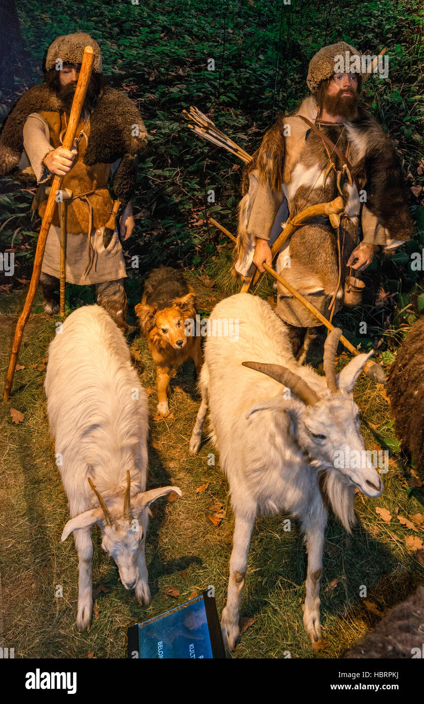 Pastoral people of corded ware culture, Stone Age, diorama, Carpathian Troy Archaeological Open-Air Museum in Trzcinica, - Stock Image