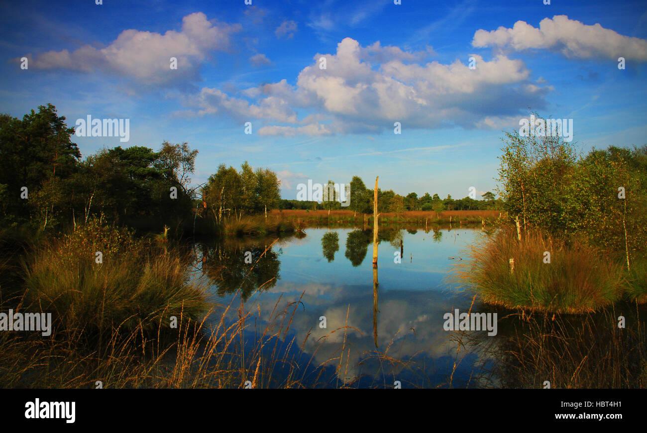 Moorlands - Stock Image