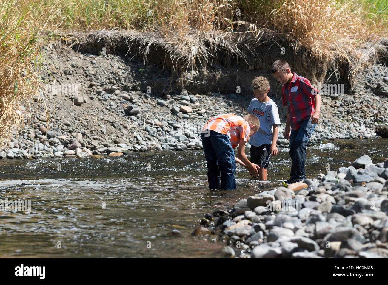 Kids exploring a river in Northeast Oregon. - Stock Image