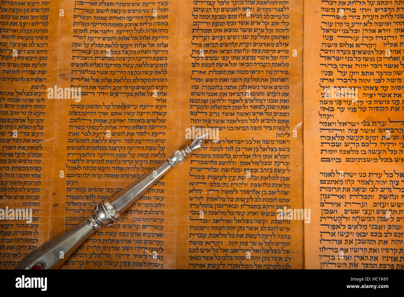 reading from an ancient torah scroll, close up - Stock Image