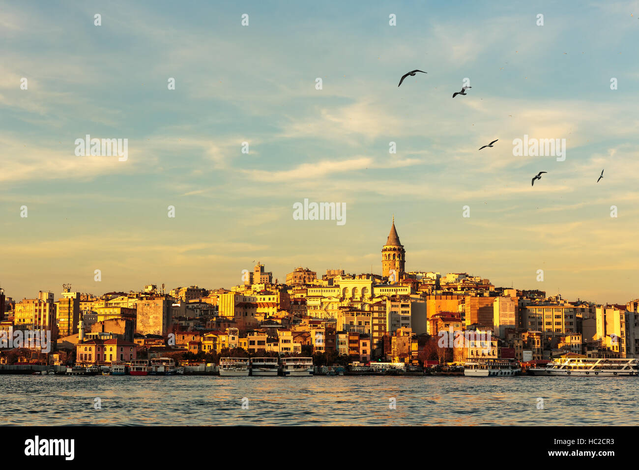 Galata Tower and Golden Horn with nice blue sky and seagulls flying - Stock Image