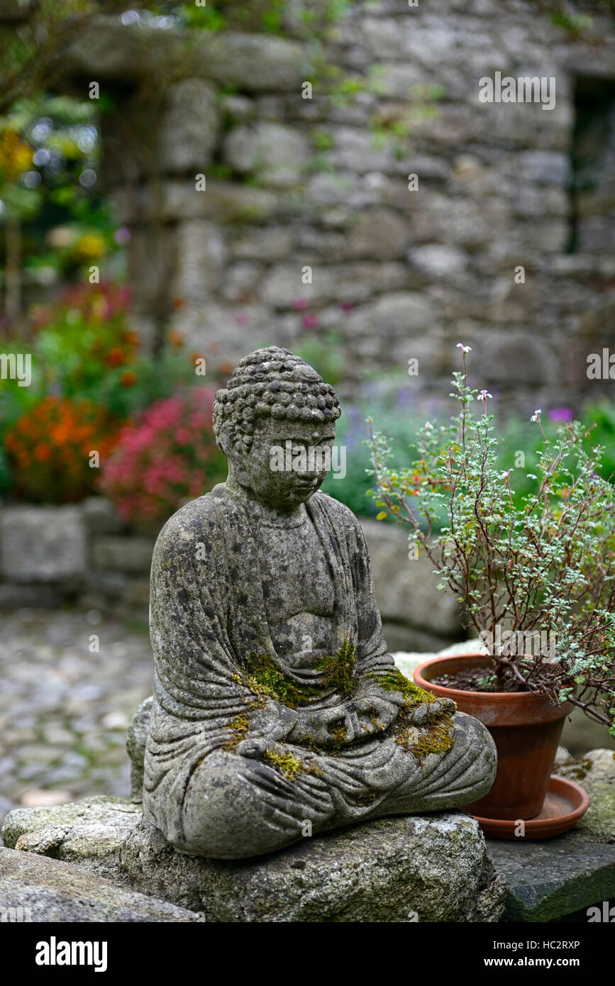 patthana garden wicklow buddha statue meditate contemplate shady patio shaded mixed foliage leaves plants candles - Stock Image