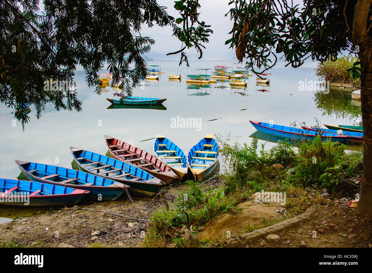 Collection of colourful boats in the Lake in Pokhara - Stock Image