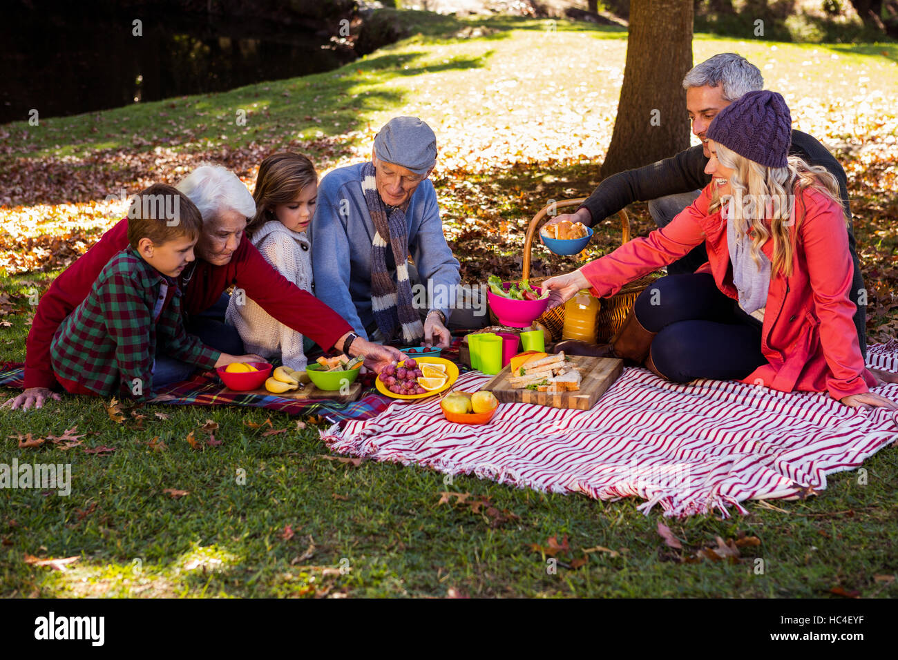 Family picnicking - Stock Image