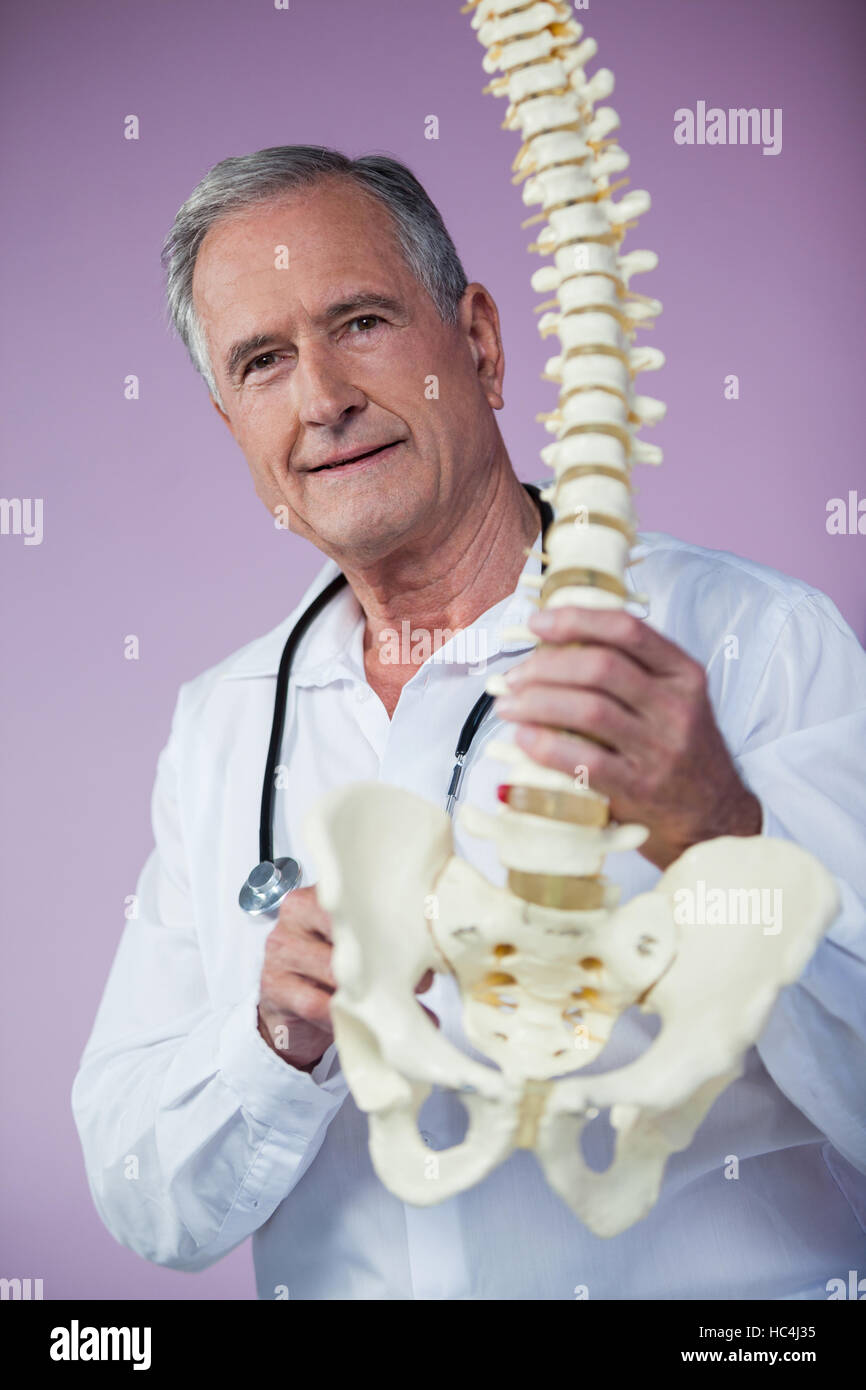 Portrait of physiotherapist examining a spine model - Stock Image