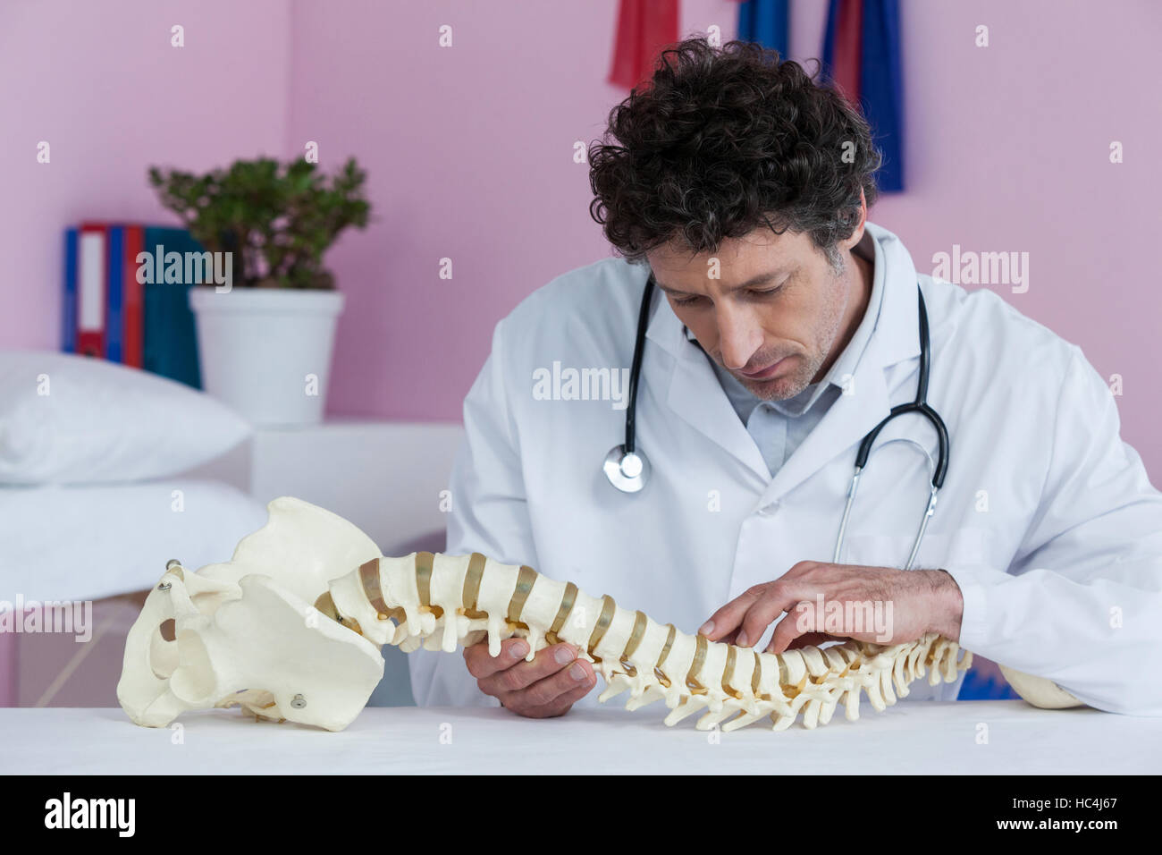 Physiotherapist examining a spine model - Stock Image