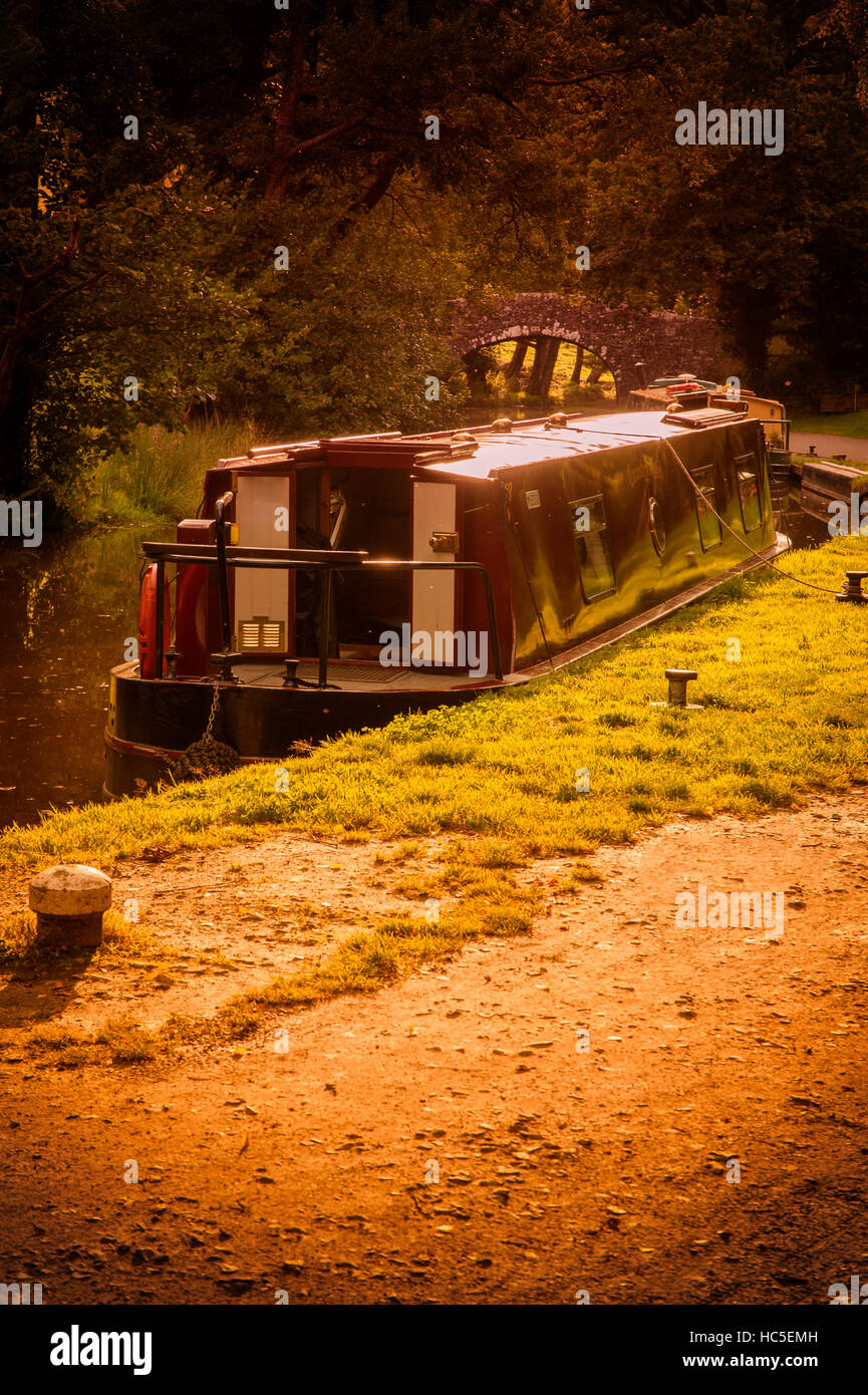 Narrowboat moored on towpath of Monmouthshire & Brecon Canal late afternoon /early evening. - Stock Image
